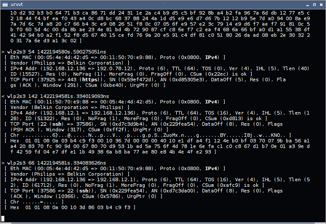 Netsniff-NG screenshot