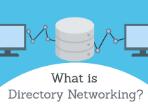 Directory Networking